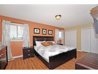 Photo 19: 155 COPPERFIELD Heights SE in Calgary: Copperfield House for sale : MLS®# C4018065