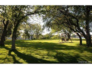 Photo 11: 206 1312 Beach Dr in VICTORIA: OB South Oak Bay Condo Apartment for sale (Oak Bay)  : MLS®# 734023