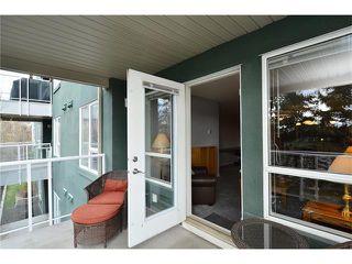 Photo 32: 209 3101 34 Avenue NW in Calgary: Varsity Condo for sale : MLS®# C4113505