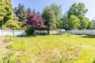 """Photo 19: 32741 BOULT Avenue in Abbotsford: Abbotsford West House for sale in """"CENTRAL ABBOTSFORD"""" : MLS®# R2169635"""