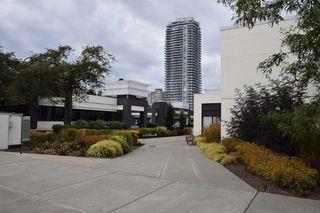 "Photo 14: 208 8084 120A Street in Surrey: Queen Mary Park Surrey Condo for sale in ""ECLIPSE"" : MLS®# R2213424"