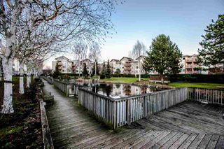 "Photo 3: 328 5500 ANDREWS Road in Richmond: Steveston South Condo for sale in ""SouthWater"" : MLS®# R2289724"