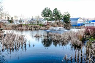 "Photo 1: 328 5500 ANDREWS Road in Richmond: Steveston South Condo for sale in ""SouthWater"" : MLS®# R2289724"