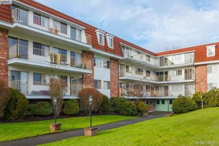Main Photo: 221 1680 Poplar Avenue in VICTORIA: SE Mt Tolmie Condo Apartment for sale (Saanich East)  : MLS®# 397763