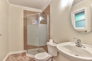 Photo 13: 20870 48 Avenue in Langley: Langley City House for sale : MLS®# R2320633