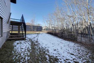 Photo 28: 173 FOXHAVEN Way: Sherwood Park House for sale : MLS®# E4137115