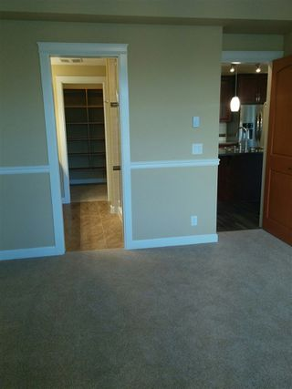 """Photo 11: 328 8157 207 Street in Langley: Willoughby Heights Condo for sale in """"Yorkson Creek"""" : MLS®# R2341621"""