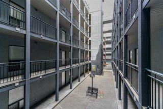 Photo 3: 203 10518 113 Street in Edmonton: Zone 08 Condo for sale : MLS®# E4149979