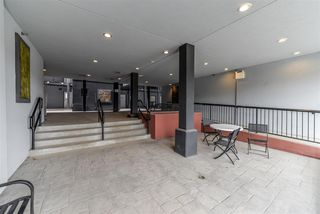 Photo 2: 203 10518 113 Street in Edmonton: Zone 08 Condo for sale : MLS®# E4149979
