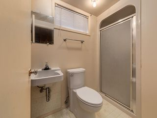 Photo 33: 3407 MORLEY Trail NW in Calgary: Banff Trail Detached for sale : MLS®# C4243656