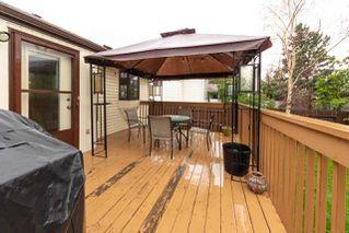 Photo 21: 30 Coachman Way: Sherwood Park House for sale : MLS®# E4162753