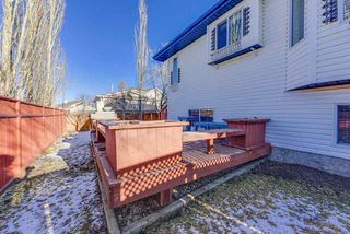 Photo 36: 10224 174 Avenue in Edmonton: Zone 27 House for sale : MLS®# E4180594