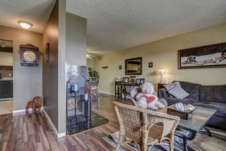 Photo 6: 17213 92 Avenue in Edmonton: Zone 20 Carriage for sale : MLS®# E4196018