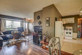 Photo 10: 17213 92 Avenue in Edmonton: Zone 20 Carriage for sale : MLS®# E4196018