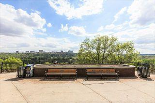 Photo 39:  in Edmonton: Zone 12 Condo for sale : MLS®# E4220853