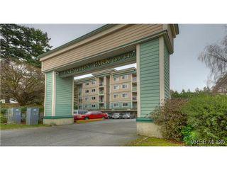 Photo 14: 103 689 Bay Street in VICTORIA: Vi Downtown Condo Apartment for sale (Victoria)  : MLS®# 331064