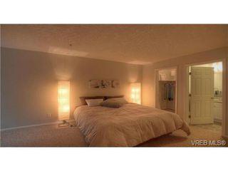 Photo 7: 103 689 Bay Street in VICTORIA: Vi Downtown Condo Apartment for sale (Victoria)  : MLS®# 331064