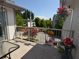 """Photo 1: 310 19122 122ND Avenue in Pitt Meadows: Central Meadows Condo for sale in """"EDGEWOOD MANOR"""" : MLS®# V1069854"""