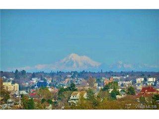 Photo 5: 403 924 Esquimalt Rd in VICTORIA: Es Old Esquimalt Condo for sale (Esquimalt)  : MLS®# 698615