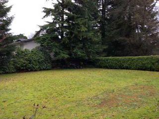 Photo 10: 21100 BERRY Ave in Maple Ridge: Southwest Maple Ridge Home for sale ()  : MLS®# V982030