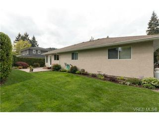 Photo 20: 6247 Rodolph Rd in VICTORIA: CS Tanner House for sale (Central Saanich)  : MLS®# 728007
