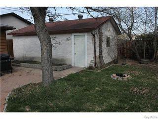 Photo 5: 380 Lanark Street in Winnipeg: River Heights / Tuxedo / Linden Woods Residential for sale (South Winnipeg)  : MLS®# 1611366
