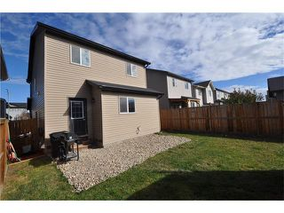 Photo 25: 269 SILVERADO Way SW in Calgary: Silverado House for sale : MLS®# C4082092