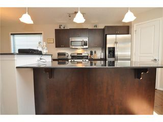 Photo 17: 269 SILVERADO Way SW in Calgary: Silverado House for sale : MLS®# C4082092