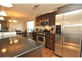 Photo 16: 269 SILVERADO Way SW in Calgary: Silverado House for sale : MLS®# C4082092