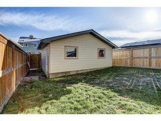 Photo 24: 169 MAHOGANY Heights SE in Calgary: Mahogany House for sale : MLS®# C4088923