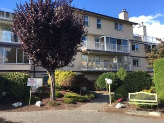 """Main Photo: 306 8975 MARY Street in Chilliwack: Chilliwack W Young-Well Condo for sale in """"Hazelmere"""" : MLS®# R2153948"""