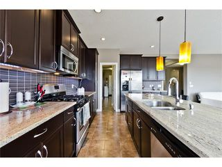Photo 25: 72 WALDEN TC SE in Calgary: Walden House for sale : MLS®# C4140773