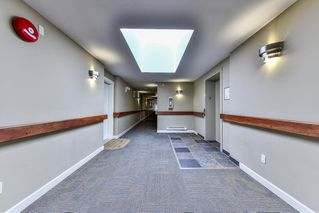 Photo 14: 406 8084 120A Street in Surrey: Queen Mary Park Surrey Condo for sale : MLS®# R2216840