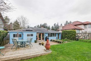 Photo 17: 1348 BEACH GROVE Road in Delta: Beach Grove House for sale (Tsawwassen)  : MLS®# R2250600