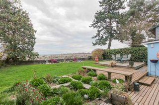 Photo 18: 1348 BEACH GROVE Road in Delta: Beach Grove House for sale (Tsawwassen)  : MLS®# R2250600