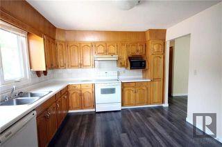 Photo 4: 255 Mapleglen Drive in Winnipeg: Maples Residential for sale (4H)  : MLS®# 1822203