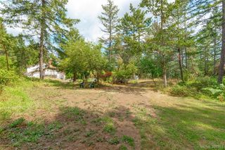 Photo 22: 335 Hector Rd in VICTORIA: SW Interurban Single Family Detached for sale (Saanich West)  : MLS®# 795587