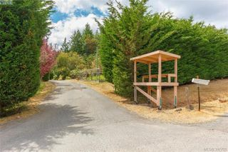 Photo 26: 335 Hector Rd in VICTORIA: SW Interurban Single Family Detached for sale (Saanich West)  : MLS®# 795587