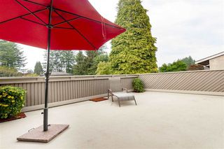 Photo 13: 34630 LABURNUM Avenue in Abbotsford: Abbotsford East House for sale : MLS®# R2300205