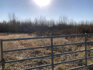 Photo 4: TWP RD 630 RGE RD 262: Rural Westlock County Rural Land/Vacant Lot for sale : MLS®# E4132543