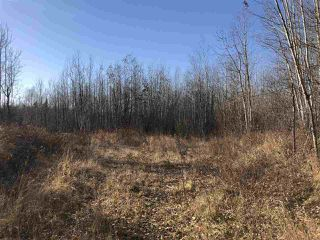 Photo 11: TWP RD 630 RGE RD 262: Rural Westlock County Rural Land/Vacant Lot for sale : MLS®# E4132543