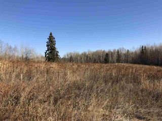 Photo 7: TWP RD 630 RGE RD 262: Rural Westlock County Rural Land/Vacant Lot for sale : MLS®# E4132543