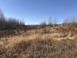 Photo 6: TWP RD 630 RGE RD 262: Rural Westlock County Rural Land/Vacant Lot for sale : MLS®# E4132543