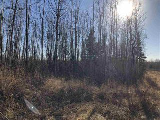 Photo 13: TWP RD 630 RGE RD 262: Rural Westlock County Rural Land/Vacant Lot for sale : MLS®# E4132543