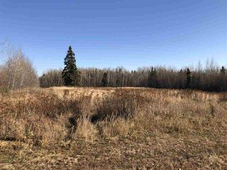 Photo 5: TWP RD 630 RGE RD 262: Rural Westlock County Rural Land/Vacant Lot for sale : MLS®# E4132543