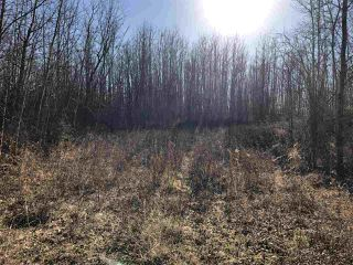 Photo 9: TWP RD 630 RGE RD 262: Rural Westlock County Rural Land/Vacant Lot for sale : MLS®# E4132543