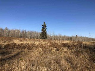 Photo 14: TWP RD 630 RGE RD 262: Rural Westlock County Rural Land/Vacant Lot for sale : MLS®# E4132543
