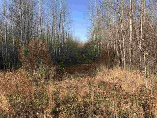 Photo 12: TWP RD 630 RGE RD 262: Rural Westlock County Rural Land/Vacant Lot for sale : MLS®# E4132543