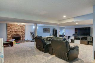 Photo 21: 252 QUEEN ALEXANDRA Road SE in Calgary: Queensland Detached for sale : MLS®# C4215983