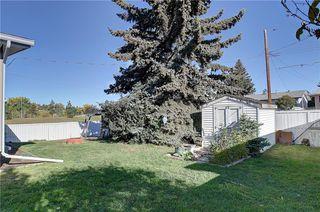 Photo 30: 252 QUEEN ALEXANDRA Road SE in Calgary: Queensland Detached for sale : MLS®# C4215983